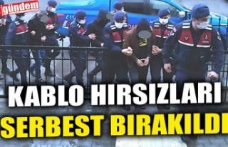 KABLO HIRSIZLARI SERBEST BIRAKILDI