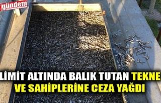 LİMİT ALTINDA BALIK TUTAN TEKNE VE SAHİPLERİNE...