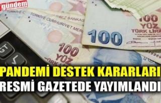 PANDEMİ DESTEK KARARLARI RESMİ GAZETEDE YAYIMLANDI