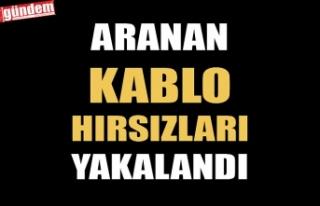 ARANAN KABLO HIRSIZLARI YAKALANDI