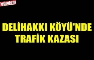 DELİHAKKI KÖYÜ'NDE TRAFİK KAZASI