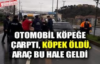 OTOMOBİL KÖPEĞE ÇARPTI, KÖPEK ÖLDÜ, ARAÇ BU...