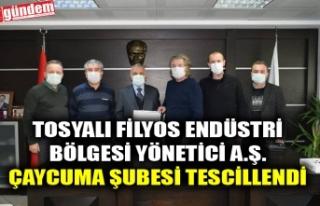 TOSYALI FİLYOS ENDÜSTRİ BÖLGESİ YÖNETİCİ A.Ş....