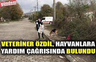 VETERİNER ÖZDİL, HAYVANLARA YARDIM ÇAĞRISINDA...