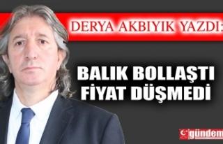 BALIK BOLLAŞTI / FİYAT DÜŞMEDİ