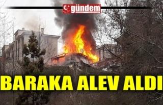 BARAKA ALEV ALDI
