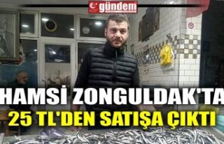 HAMSİ ZONGULDAK'TA 25 TL'DEN SATIŞA ÇIKTI