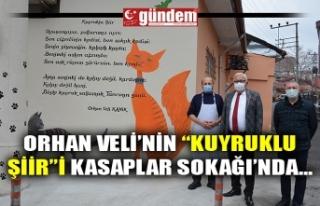 """ORHAN VELİ'NİN """"KUYRUKLU ŞİİR""""İ KASAPLAR..."""