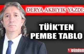 TÜİK'ten Pembe Tablo
