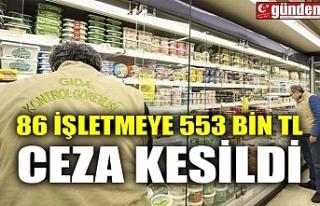 86 İŞLETMEYE 553 BİN TL CEZA KESİLDİ