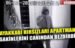 AYAKKABI HIRSIZLARI APARTMAN SAKİNLERİNİ CANINDAN...