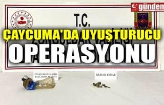ÇAYCUMA'DA UYUŞTURUCU OPERASYONU