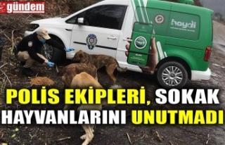 POLİS EKİPLERİ, SOKAK HAYVANLARINI UNUTMADI