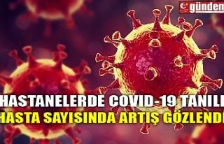 HASTANELERDE COVID-19 TANILI HASTA SAYISINDA ARTIŞ...