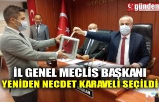 İL GENEL MECLİS BAŞKANI YENİDEN NECDET KARAVELİ...