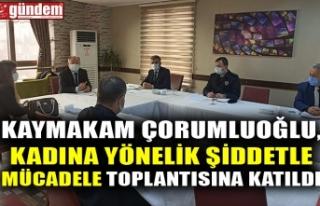 KAYMAKAM ÇORUMLUOĞLU, KADINA YÖNELİK ŞİDDETLE...