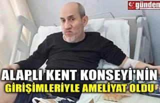 ALAPLI KENT KONSEYİ'NİN GİRİŞİMLERİYLE...