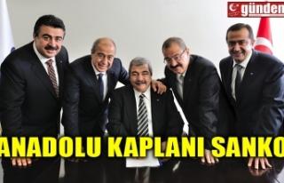 ANADOLU KAPLANI SANKO