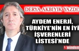 Aydem Enerji, Türkiye'nin En İyi İşverenleri...