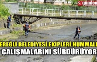 EREĞLİ BELEDİYESİ EKİPLERİ HUMMALI ÇALIŞMALARINI...