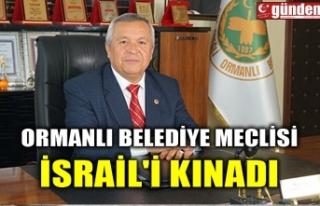 ORMANLI BELEDİYE MECLİSİ İSRAİL'İ KINADI