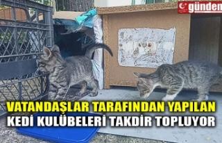 VATANDAŞLAR TARAFINDAN YAPILAN KEDİ KULÜBELERİ...