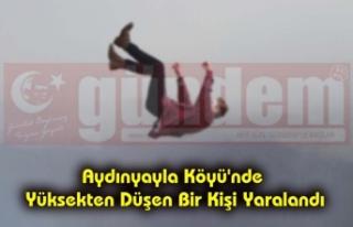 Aydınyayla Köyü'nde Yüksekten Düşen Bir...