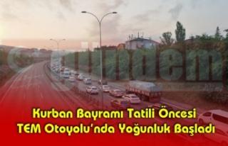 Kurban Bayramı Tatili Öncesi TEM Otoyolu'nda Yoğunluk...