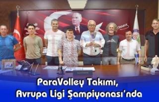 ParaVolley Takımı, Avrupa Ligi Şampiyonası'nda