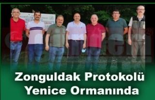 Zonguldak Protokolü Yenice Ormanında.