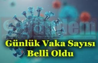 Zonguldak'ta bir gün içinde toplam 20 vaka görüldüğü...