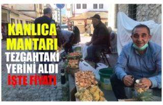 KANLICA MANTARI TEZGAHTAKİ YERİNİ ALDI