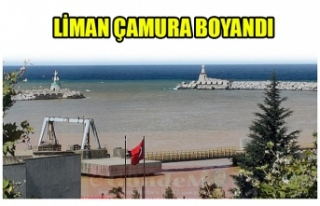 LİMAN ÇAMURA BOYANDI