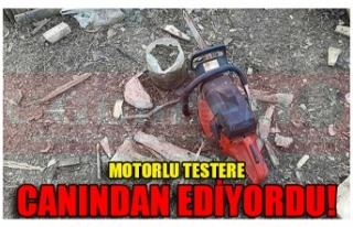 MOTORLU TESTERE CANINDAN EDİYORDU!