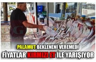 PALAMUT BEKLENENİ VEREMEDİ FİYATLAR KIRMIZI ET...