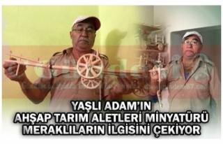 YAŞLI ADAM'IN AHŞAP TARIM ALETLERİ MİNYATÜRÜ...