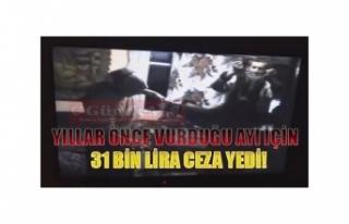 YILLAR ÖNCE VURDUĞU AYI İÇİN 31 BİN LİRA CEZA...