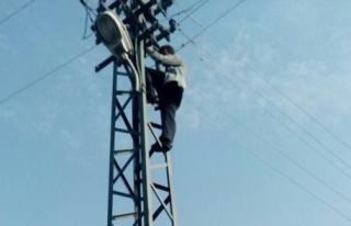 Elektrik direğine çıkıp intihara kalkıştı