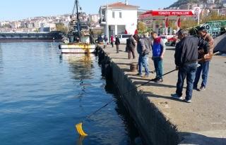 Karadeniz'de deniz suyunun aniden soğuması balıkları...