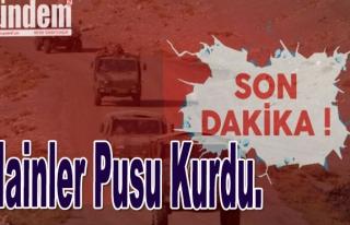Hainler pusu kurdu