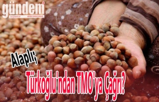 Türkoğlu'ndan TMO'ya çağrı