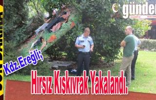 Ereğli'de Hırsız Kıskıvrak Yakalandı