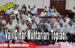 Vali Çınar Muhtarları Topladı.