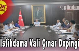 İstihdama Vali Çınar Dopingi