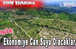 Zonguldak ve Karabük'te Ekonomiye Can Suyu Olacaklar