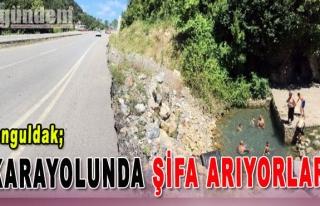 Zonguldak Karayolunda Şifa Arıyorlar