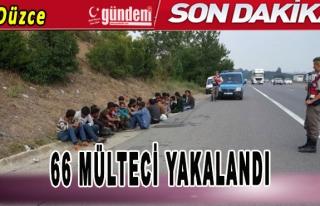 TEM otoyolunda 66 Mülteci Yakalandı