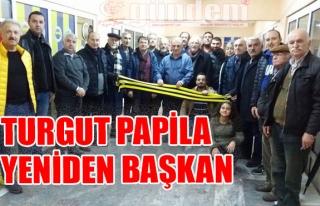 Turgut Papila yeniden Başkan