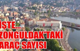 TÜİK açıkladı... İşte Zonguldak'taki araç...