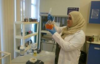 Araştırma laboratuvarı yabancı akademisyenleri...